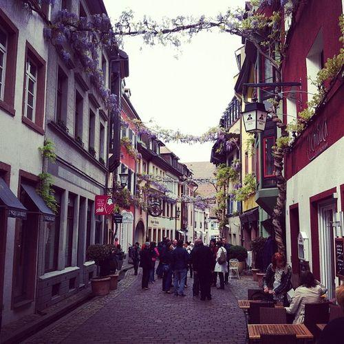 #freiburg #breisgau Freiburg Breisgau