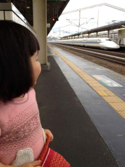 新幹線で帰ります。乗ったことがないと言い張るピノと二人旅。ほんまは二回目なんやけど、一回目は寝てたから、仕方ないか。