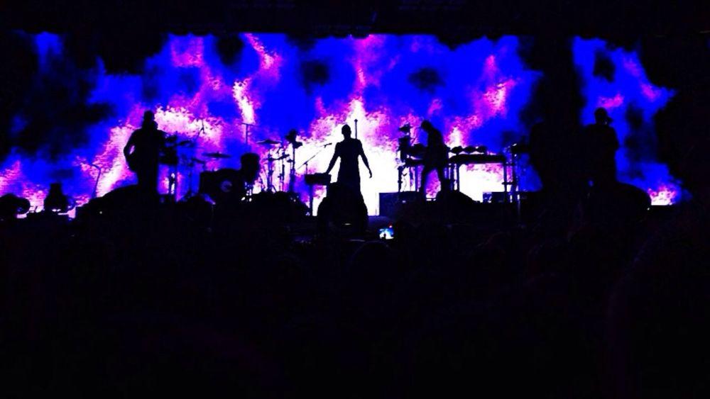 NIN NIN Concert Nine Inch Nails Concert Trent Reznor