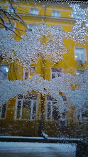 Full Frame Backgrounds Close-up Day Car Wash Nature Indoors  Abstract Snow Day Winter Snow Cold Temperature Car Snow ❄ Winter Time Winter 2017 Snowing Colors Colorful Winter Snow ❄ Snowing Cars View Snowflake ❄ Freshness Nature