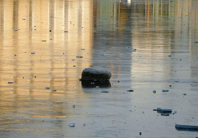 Water Reflection Nature No People Canal Eau Reflet Couleurs Soleil FIN D Après Midi Janvier Beauté De La Nature Pavé Sur Canal Gelé