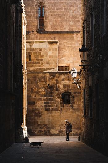 Rear view of man walking on footpath against building