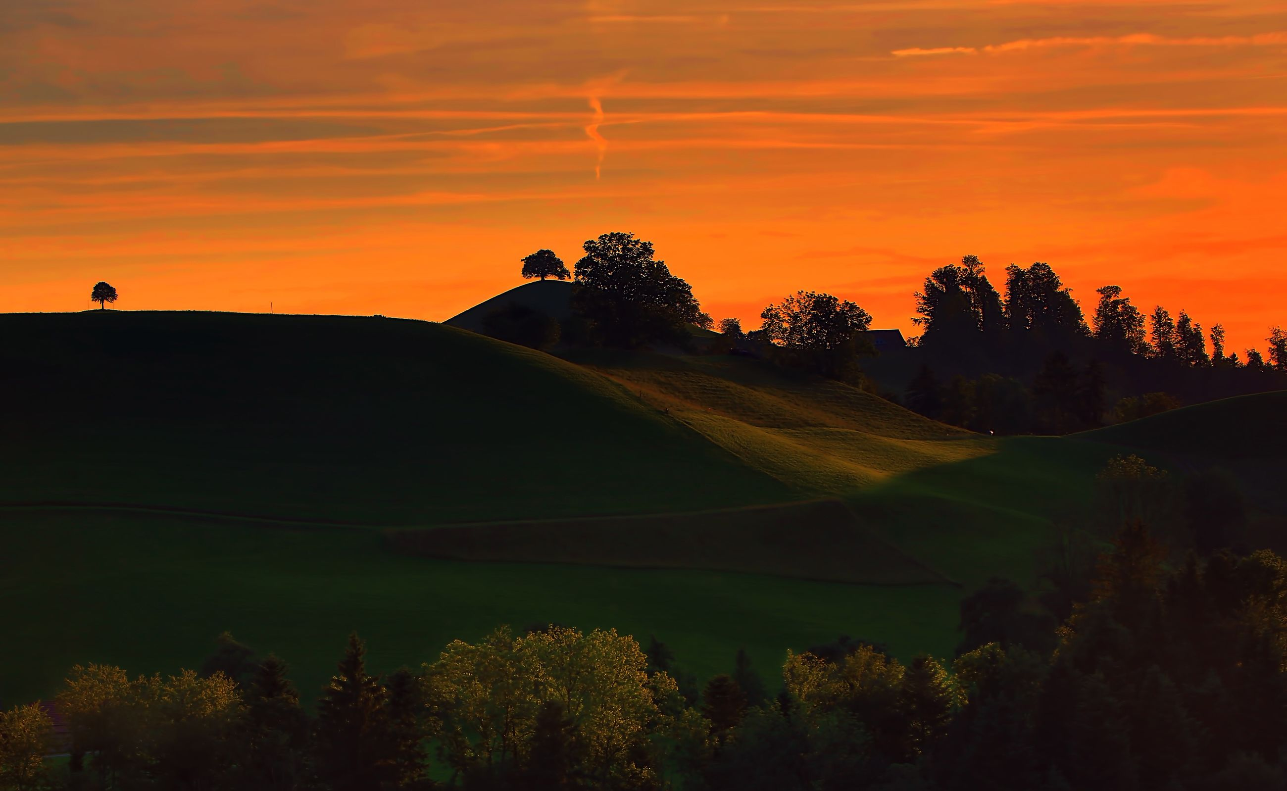 sunset, orange color, tree, beauty in nature, nature, scenics, silhouette, tranquil scene, landscape, tranquility, sky, no people, outdoors, growth, golf course, day