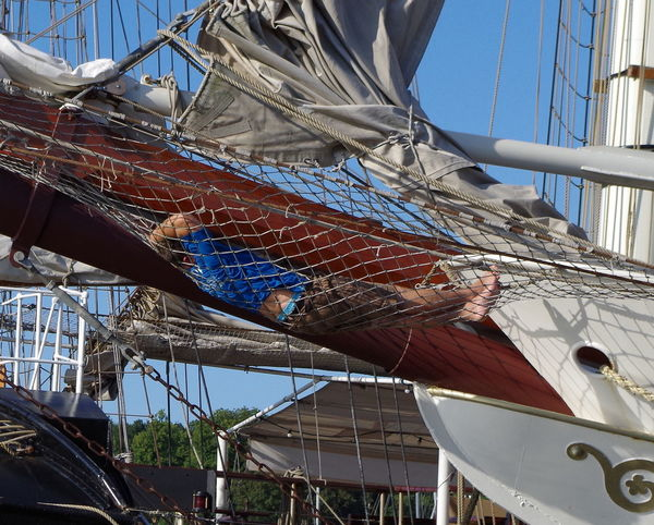 Pause ... Boat Boot Bug Draußen HanseSail Network Netz Night Night, Sleep Tight Outdoors Prow Rostocker Hafen Sail Sailing Ship Schlafen Segel Segelschiff Siesta Sleep