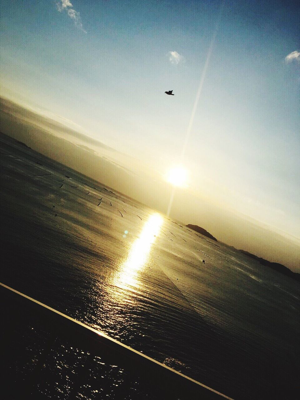 sea, nature, horizon over water, sun, water, sunset, scenics, flying, transportation, beauty in nature, sky, tranquil scene, sunlight, outdoors, no people, tranquility, mid-air, airplane, day, airplane wing