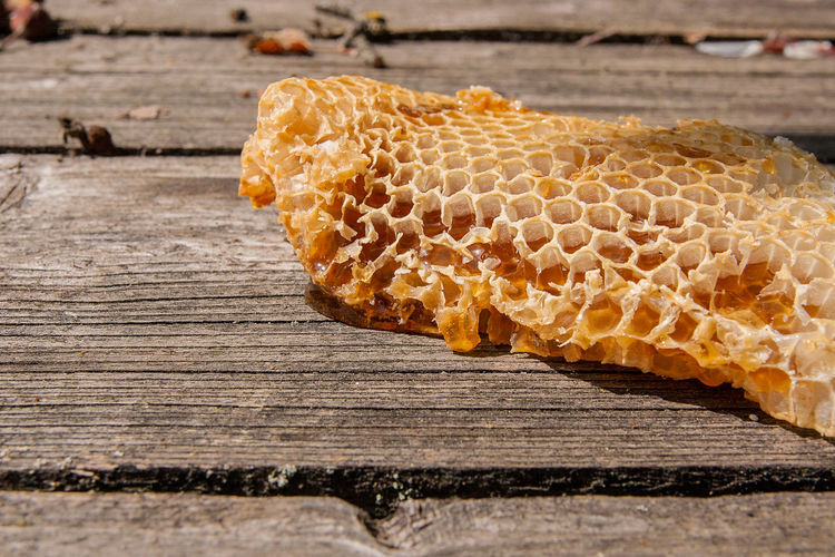 Animal Animal Themes Animal Wildlife Animals In The Wild APIculture Beauty In Nature Bee Beehive Close-up Design Food Food And Drink Hexagon Honey Honeycomb Insect Nature No People Table Wood - Material Wood Grain