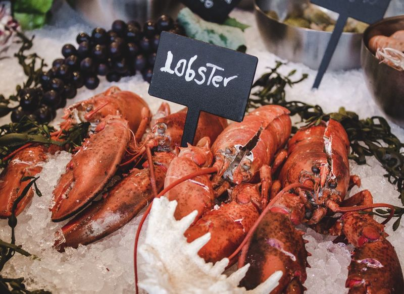 50+ Lobster - Seafood Pictures HD | Download Authentic Images on EyeEm