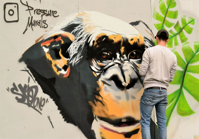 Graffiti Animal Themes Artist At Work Close-up Day Dog Domestic Animals Festival Leisure Activity Lifestyles Mammal Nature One Animal One Person Outdoors People Pets Streetphotography Tiger Upfest2017 Urban Landscape