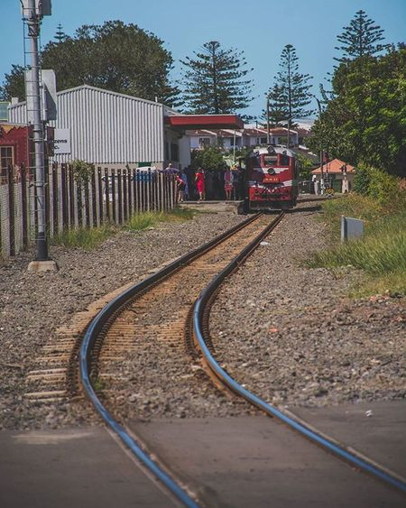 Train tracks 🚇🚉 -Napier- Mkexplore Streetdreamsmag Sonyalpha TheCreatorClass 1stinstinct Vscocam VSCO Facetnation AdventureThatIsLife Doitforthegram Featuremeinstagood Hypebeast  Seeforyourself Photooftheday Hstakeover Createexploretakeover Epic_captures Citylimitless Herschelsupply Welltraveled Inspirationcultmag Peoplescreatives Agameoftones Exklusive_shot Natureaddict liveauthentic aov artofvisuals huffpostgram instamagazine_