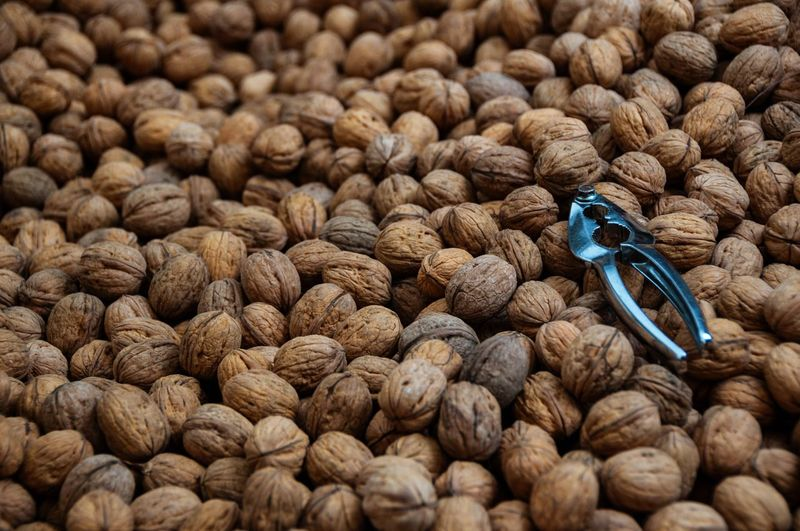 Nuts Schiaccianoci Noci Nutshell Nutcracker Selective Focus Close-up No People Nut - Food Day Outdoors