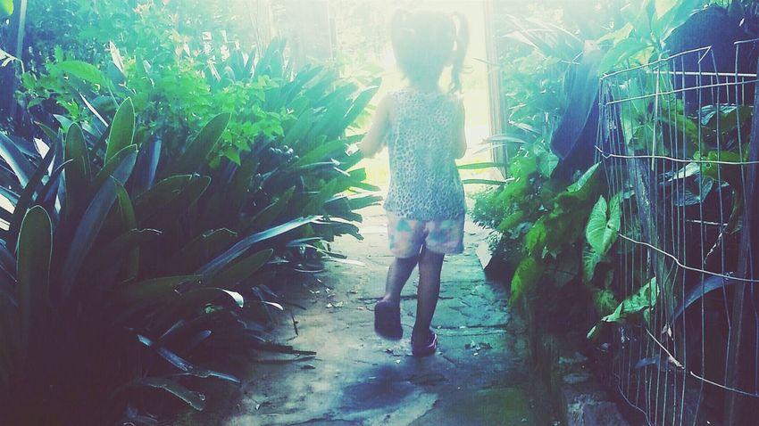 Menina Verde Caminhar Criança Plantas Caminho Brazil Child Natureza Sol