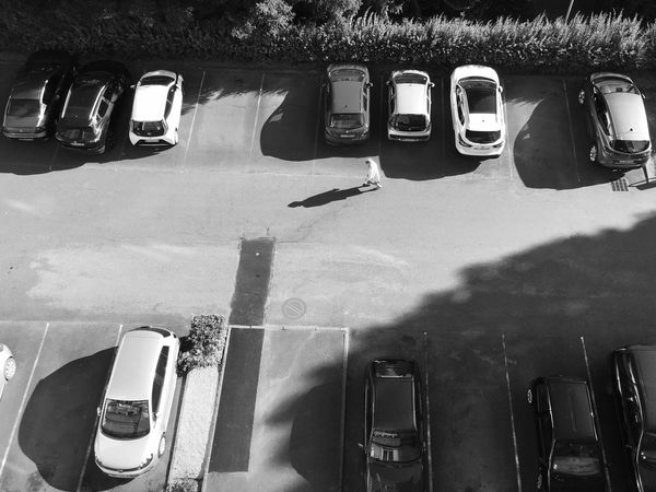 IPhoneography Mode Of Transportation Transportation Land Vehicle Shadow Car High Angle View Motor Vehicle