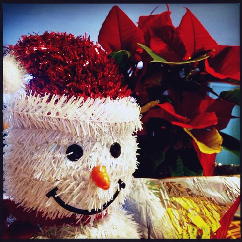 Happy 1st!! December Snowman Poinsettia Winter Holly Jolly