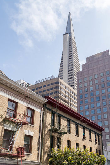 Transamerica Pyramid, San Francisco... Architecture City Cityscape San Francisco San Francisco Architecture San Francisco, California Skyline Skyscrapers Transamerica Pyramid Building Apartment Architecture Building Building Exterior Built Structure Cities City cityscapes Low Angle View Residential District Skylines Skyscraper Tall Buildings Tallest Building In San Francisco Tower Transamerica Pyramid
