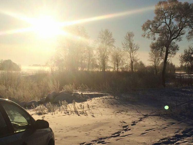 Car Sunlight Tree Sunset No People Sunbeam Outdoors Cold Temperature Nature Day Landscape Fishing Area Lithuania Nature Beauty In Nature Nature Sky Tree Snow Snow ❄ Ice Tree Area Beautiful Nature Forest Winter Beautyful