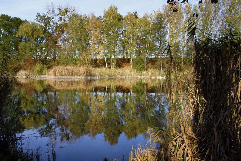 a lake five