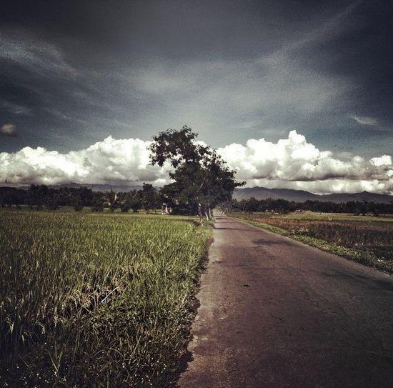 Blackandwhite Landscape Eye4photography  Streetphotography