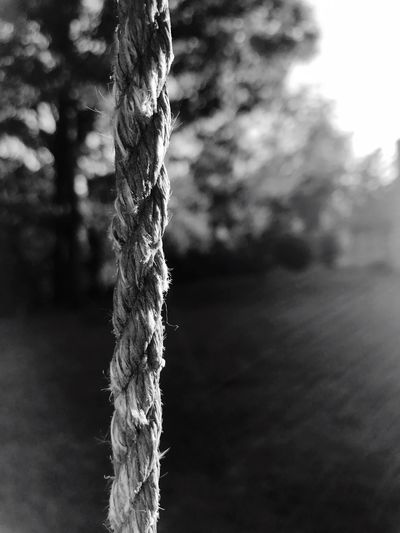 Close-up No People Focus On Foreground Ropes And Lines RopesandChains Focused Ropes Rope Blackandwhite Black And White Black And White Photography Black & White Black And White Collection