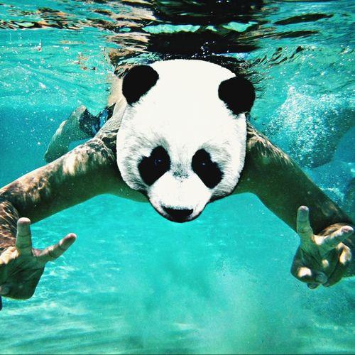 Rinduu Underwater Lifeproof Maluuu