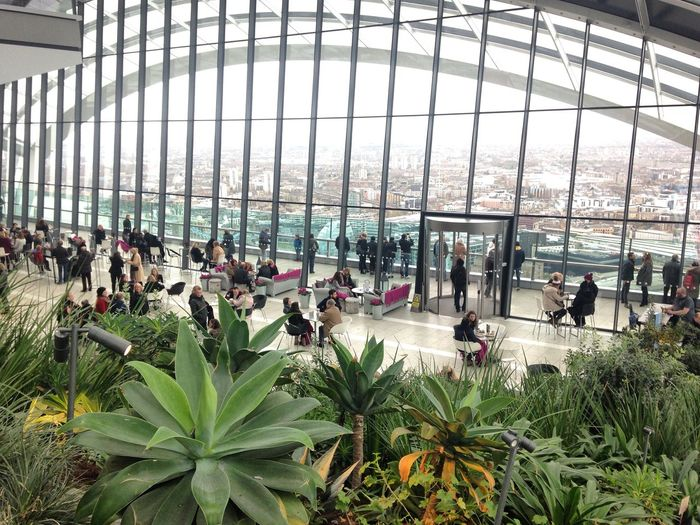 London Sky Garden at Fenchurch Street Viewfromskygarden Igerslondon Thisislondon