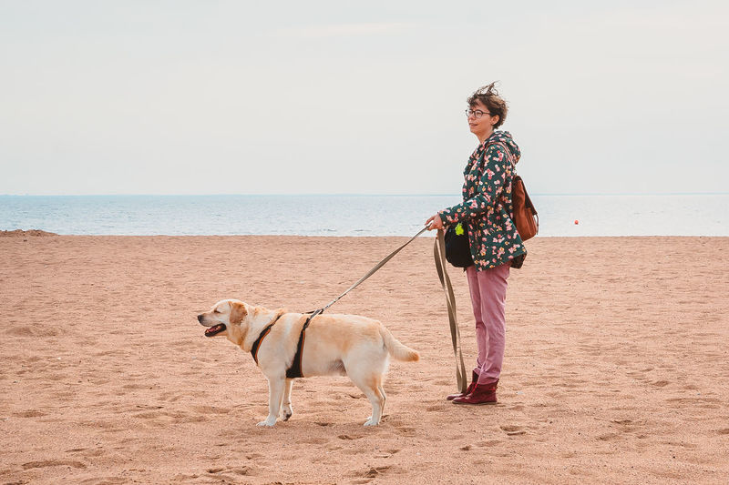 A girl and a labrador retriever stand in the wind on a sandy beach in autumn. traveling with a dog