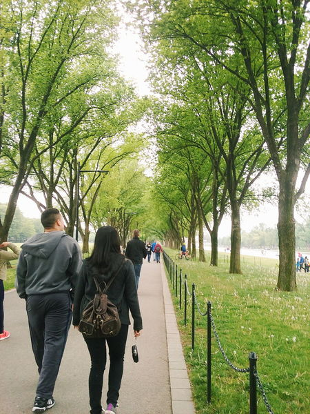 My Favorite Photo Outdoor Photography Outdoors Couple Trees Washington, D. C. Reflecting Pool Couple Walking