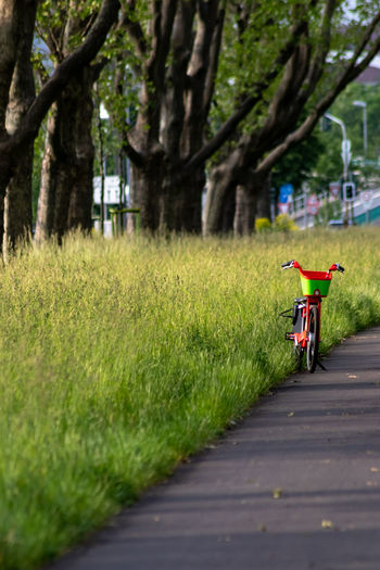 Bike sharing provider and electro scooter provider compete in urban cities with automobile traffic