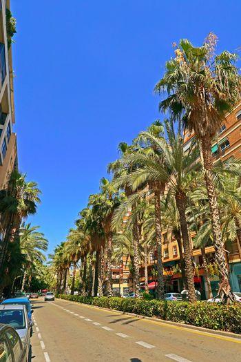València SPAIN
