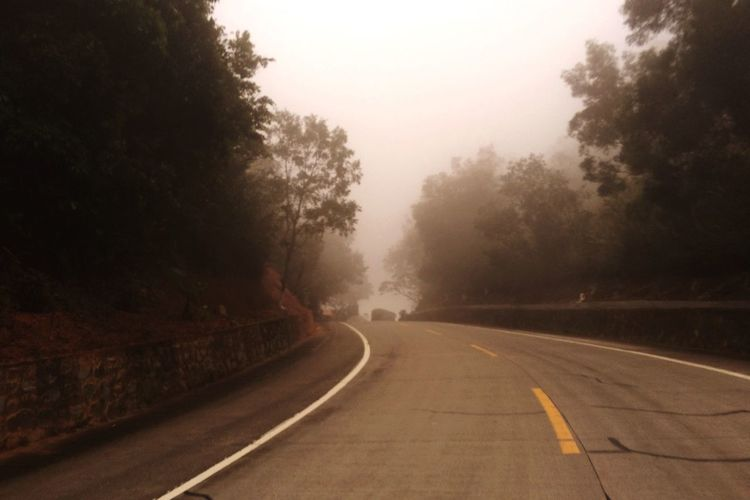 The Way Forward Fog Road Tree Transportation No People Day Nature Outdoors Tranquility Mist Scenics Beauty In Nature Sky EyeEmNewHere