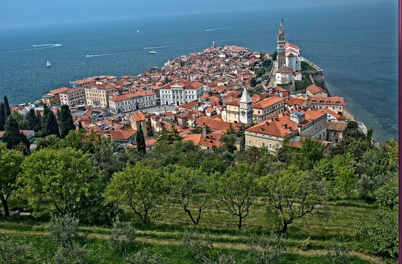 One of the most beautiful mediterranean cities Architecture Building Building Exterior City Cityscape Day High Angle View Horizon Over Water Land Nature No People Outdoors Piran Plant Residential District Sea Town TOWNSCAPE Tree Water