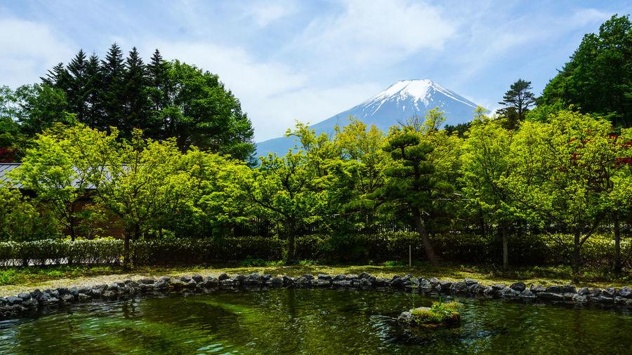 Mount Fuji in