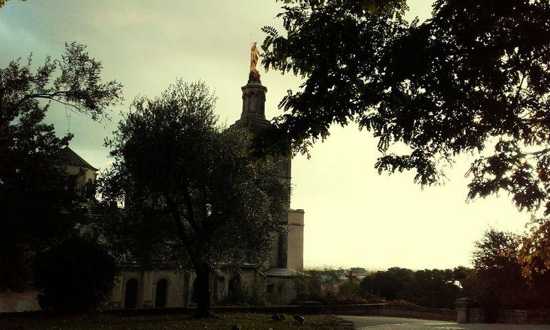 Avignon City palais des papes