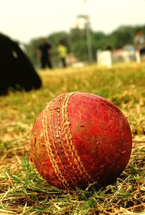 Brown No People Nature Food Close-up Day Outdoors Sky Cricket Ball Cricket Field Cricket Ground Cricketball