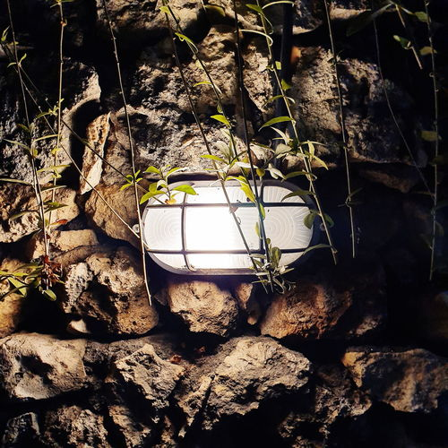 Close-up of lantern hanging on rock against wall