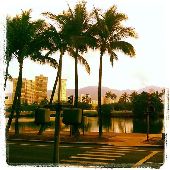 Aloha Hawaii....never is easy to leave