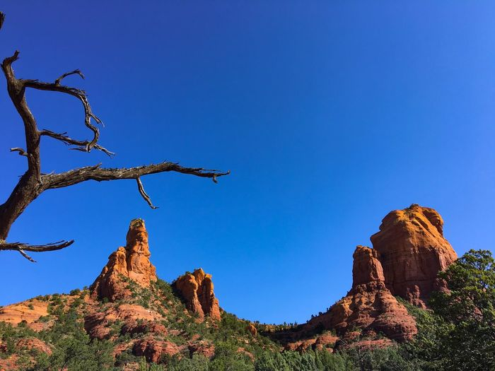 'Sphinx' and the 'Mitten' in Sedona from Jordan Trail. Idk. It's a stretch, at best. Earlymorningview Permian Sky Plant Low Angle View Blue Nature Clear Sky Tree Beauty In Nature