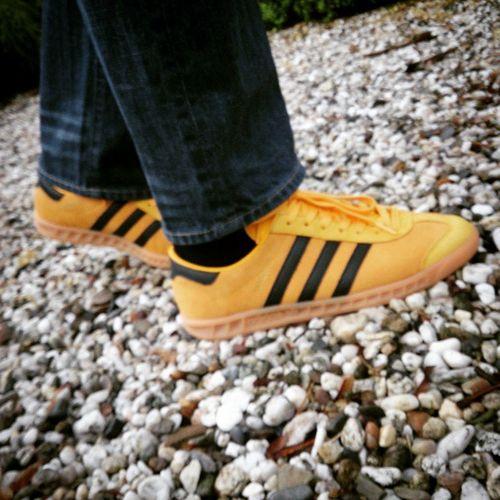 Todaystrainers Adidashamburg Adidas Justanotherdayattheoffice Bringingmetowork Adiddicted Adi_gallery Thebrandwiththethreestripes Thethreestripes Talkingtrainers