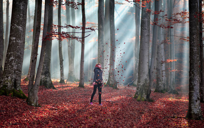 Woman standing in forest in autumn
