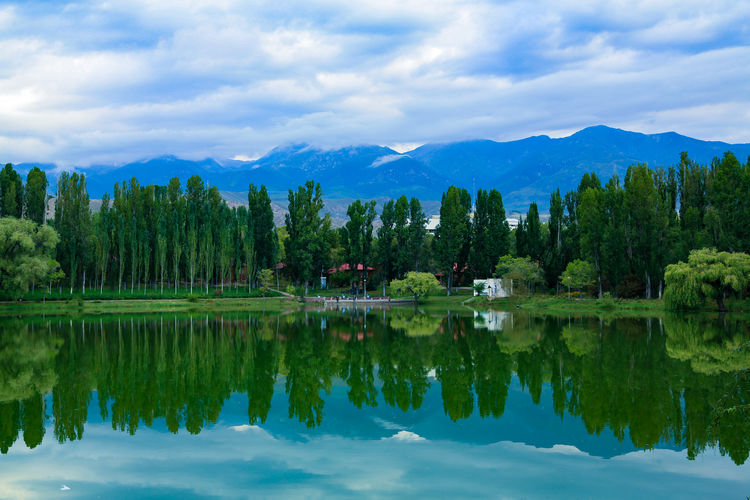 Reflection tree Icecap Tianshan Mountain Tree Water Mountain Lake Symmetry Reflection Summer Sky Landscape Cloud - Sky