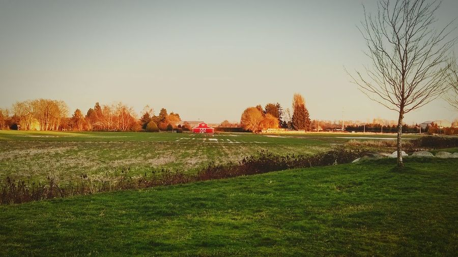 Beautiful evening at London Farms Richmond BC Vancouver Canada Evening Drive Beautiful Nature At Its Best I Love Nature