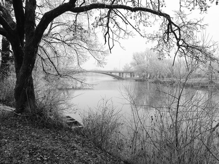 Black and white Nature Water Tree Lake No People Outdoors Sky Scenics Fog Beauty In Nature Day Tree Nature Bridge - Man Made Structure City Tranquil Scene Beauty In Nature Hrvatska, Europe Croatia