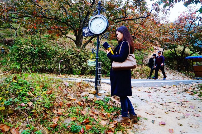Autumn Colors Autumn🍁🍁🍁 Woman South Korea Leaves Fall Beauty Clock Advertising Photography Beautiful My Favorite Photo