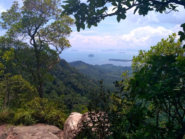 Krabi, Thailand Tree Plant Beauty In Nature Scenics - Nature Nature Water Land Landscape Mountain Sea View Ocean View Horizon Over Water Rock Tourism No People Place Of Worship Travel Destinations Beauty In Nature Land Sky Cliff Travel Tranquil Scene Sea Rock - Object