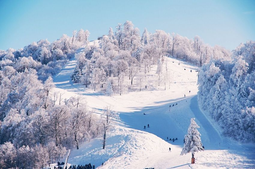 Snow Sports Outdoors Life Travel Destinations People Watching Snow Winter Cold Temperature Landscape Outdoors Mountain Adventure Club Peopleandplaces Check This Out Winter Wanderlust Its Cold Outside Weather Sky Snowing Nature Finding New Frontiers Tree Frozen Day People BYOPaper!
