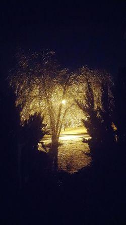 The Night. Nightscape Nightlife Outsideworld