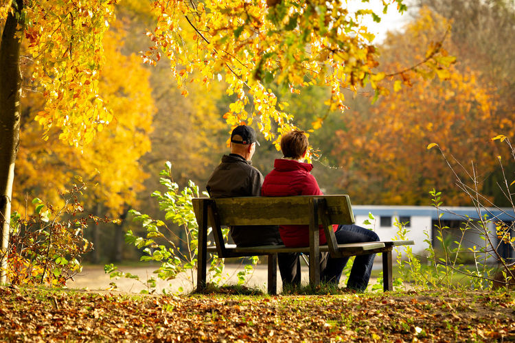 Rear view of couple sitting on bench in park during autumn