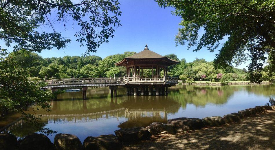 Gazebo over lake in park