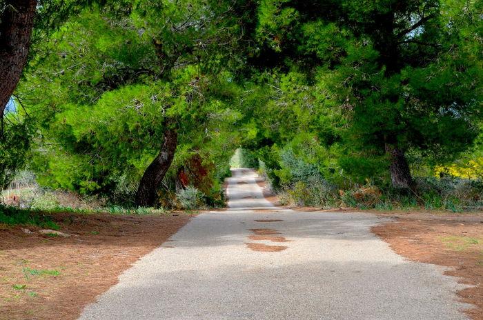 #autumn #mallorca #spain #street Outdoors Perspective Road