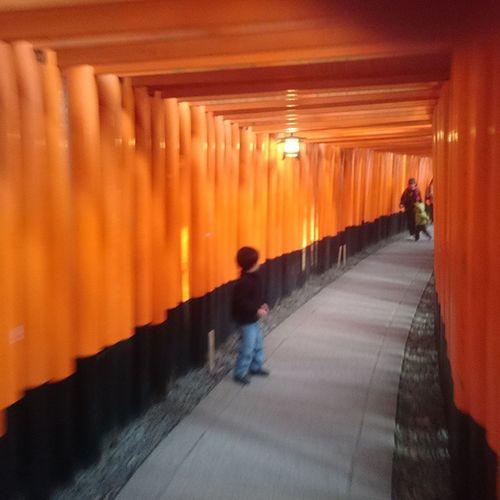 Kyoto Fushimiinaritaisha Unexpectedgoodshot Nofilter