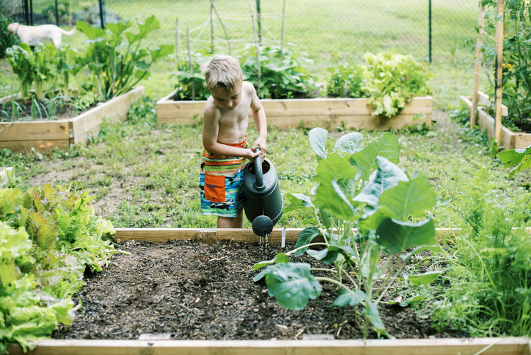 Full length of shirtless boy in garden